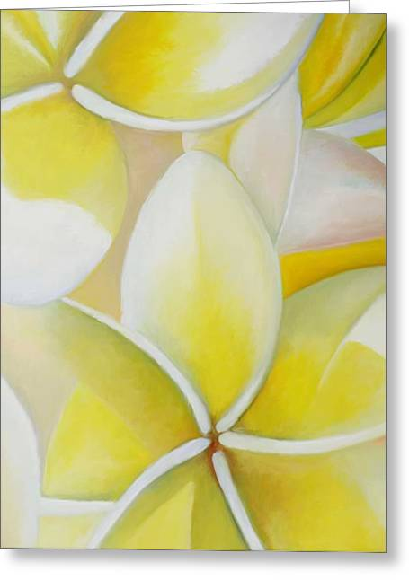 Frangipani Greeting Card by Amir