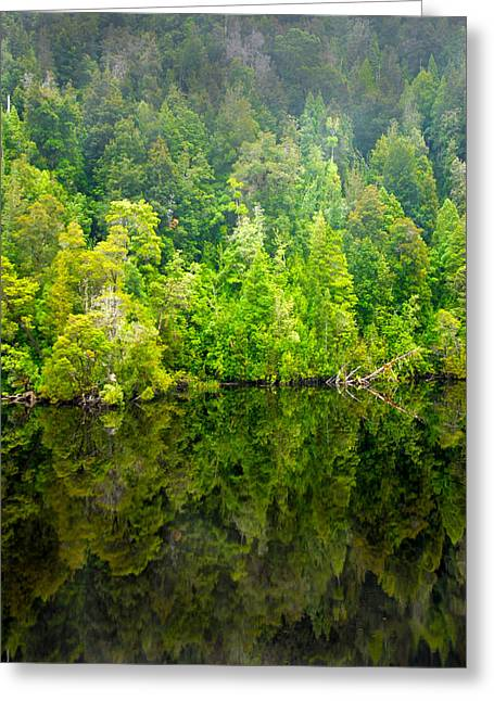 Franklin Gordon Rivers Reflections II Greeting Card