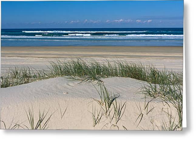 Frasier Island Beach Australia Greeting Card by Panoramic Images