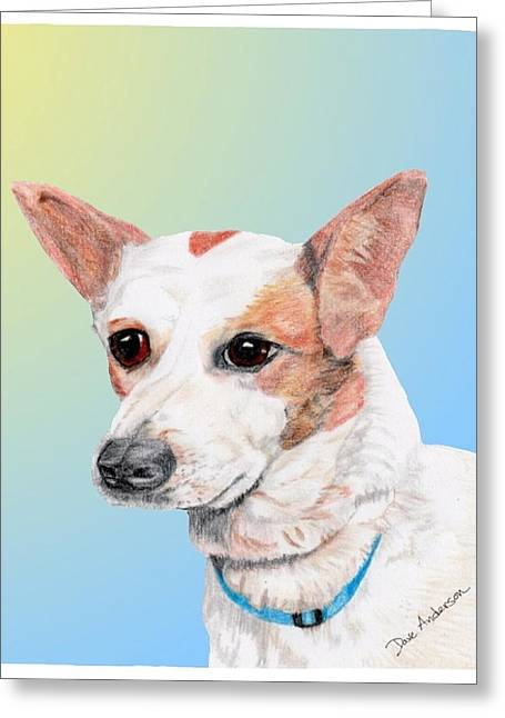 Freckles A Former Shelter Dog Greeting Card by Dave Anderson