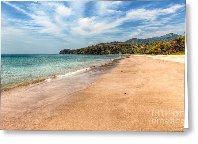 Free Beach  Greeting Card by Adrian Evans