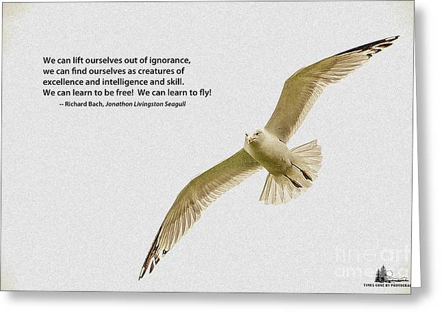 Free Flight Greeting Card