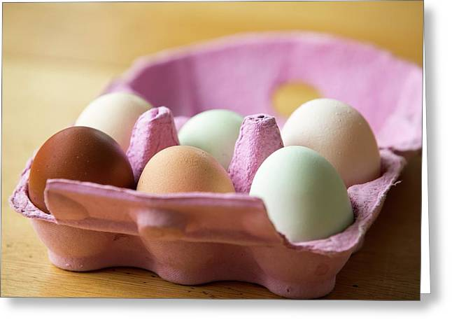 Free Range Eggs Greeting Card by Ashley Cooper