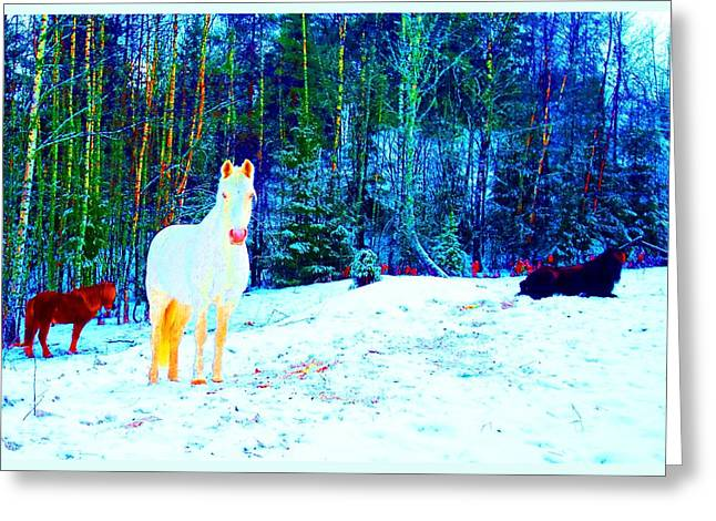 The Blessed Moment Of The Free Spirits Greeting Card by Hilde Widerberg