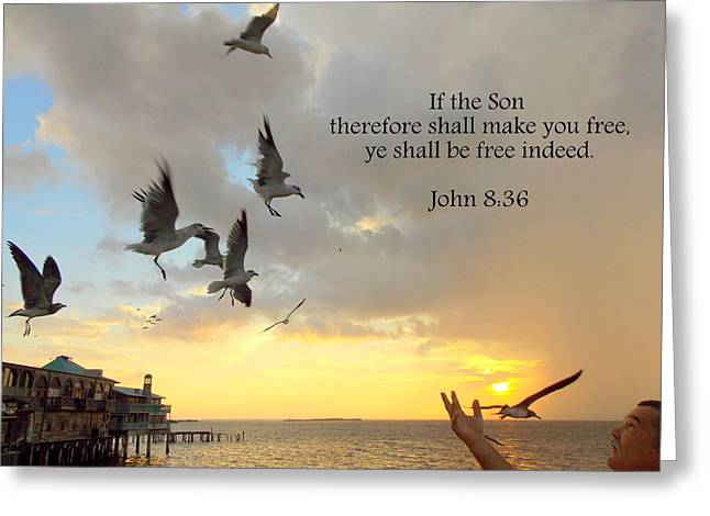 Freed By The Son 1 Greeting Card