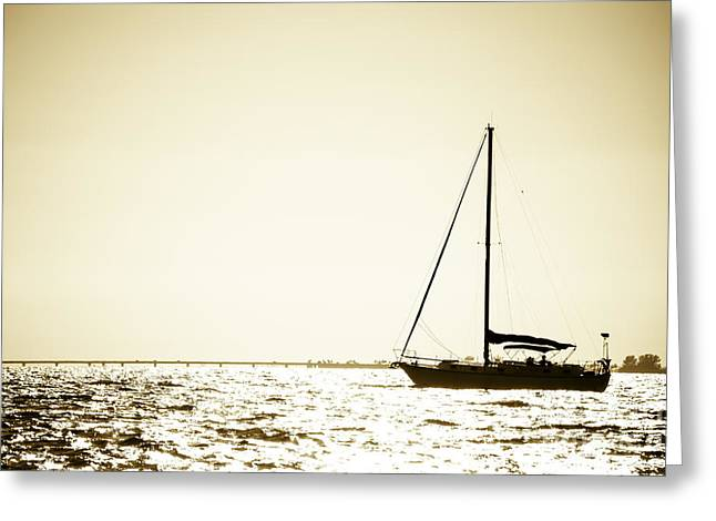 Freedom Greeting Card by VistoOnce Photography