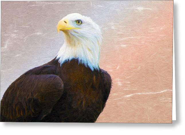 Freedom Flyer Greeting Card by Jeff Kolker