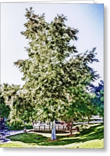 Freedom Tree Greeting Card