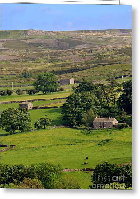 Fremington Edge And Disused Quarries Above Reeth In Swaledale Greeting Card by Louise Heusinkveld
