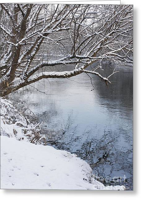 French Broad River  Greeting Card by Jonathan Welch