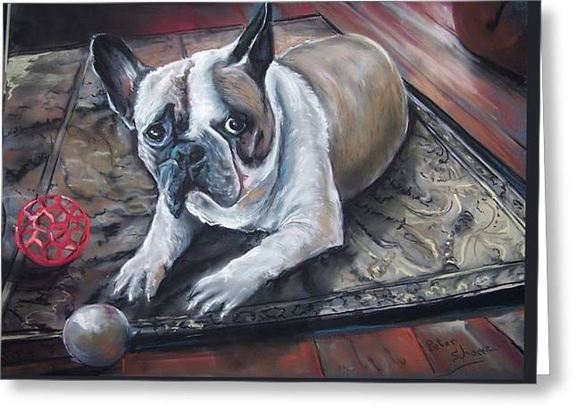 french Bull dog Greeting Card by Peter Suhocke