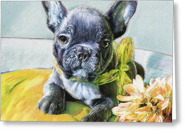 French Bulldog Puppy Greeting Card by Jane Schnetlage