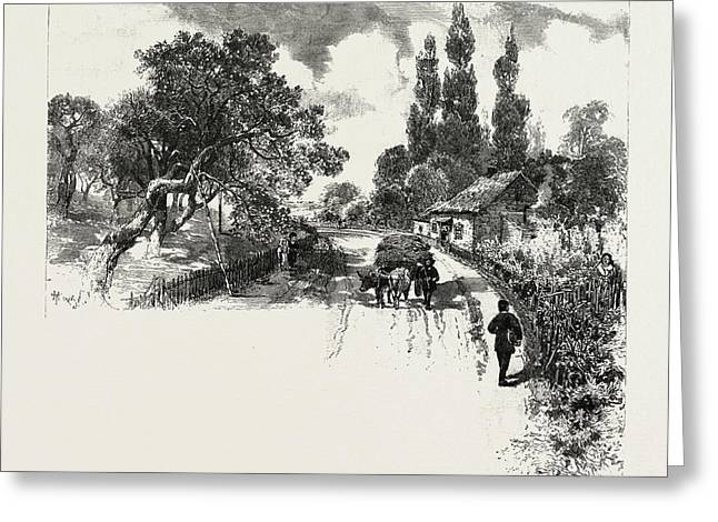 French Canadian Life, An Old Orchard, Canada Greeting Card by Canadian School