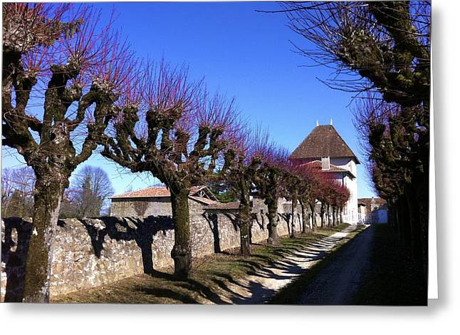 Greeting Card featuring the photograph French Laneway by Marty  Cobcroft