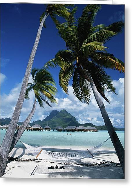 French Polynesia, Bora Bora, View Greeting Card by Stuart Westmorland