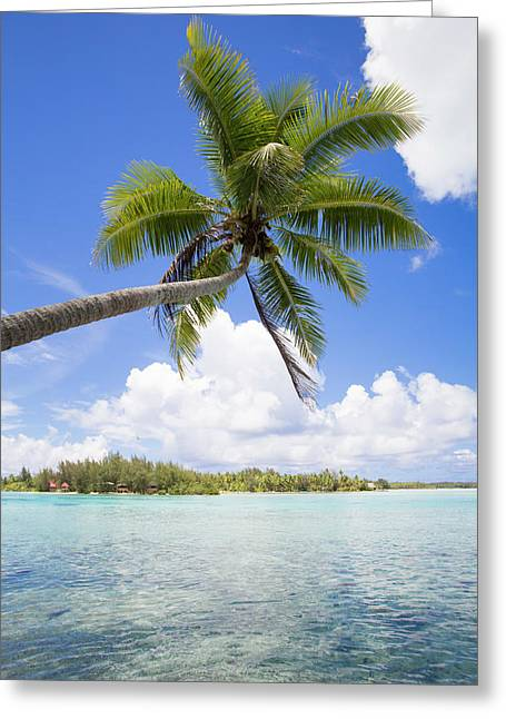 French Polynesia, Society Island, Bora Greeting Card by Aliscia Young