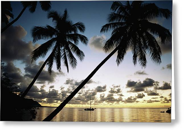 French Polynesia, View Of Moorea Bay Greeting Card