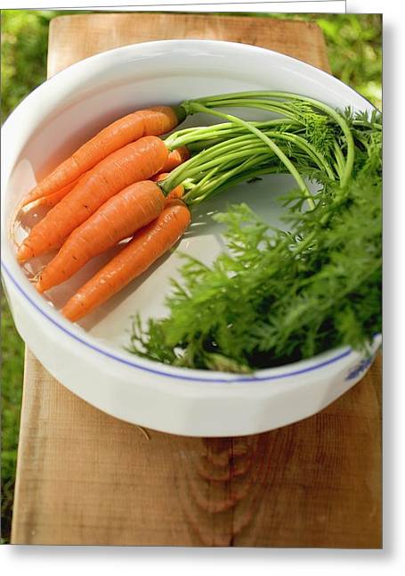 Fresh Carrots With Tops In White Bowl Greeting Card