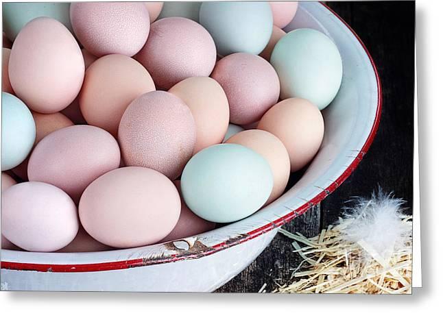 Fresh Colorful Farm Eggs Greeting Card by Stephanie Frey