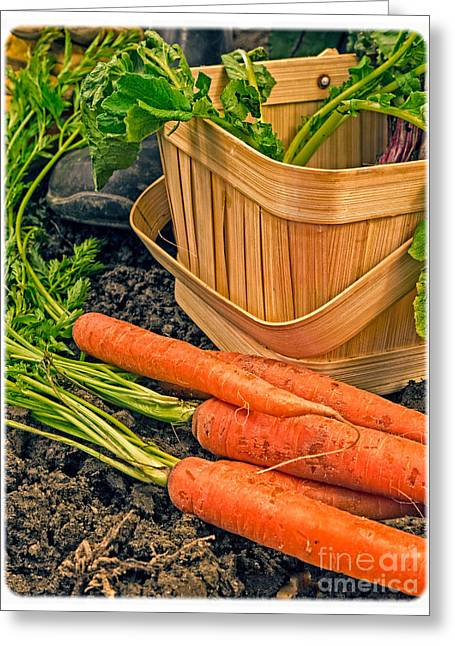 Fresh Garden Vegetables Greeting Card by Edward Fielding