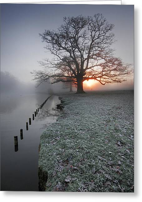 Fresh New Morning  Greeting Card by John Chivers