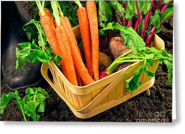 Fresh Picked Healthy Garden Vegetables Greeting Card by Edward Fielding
