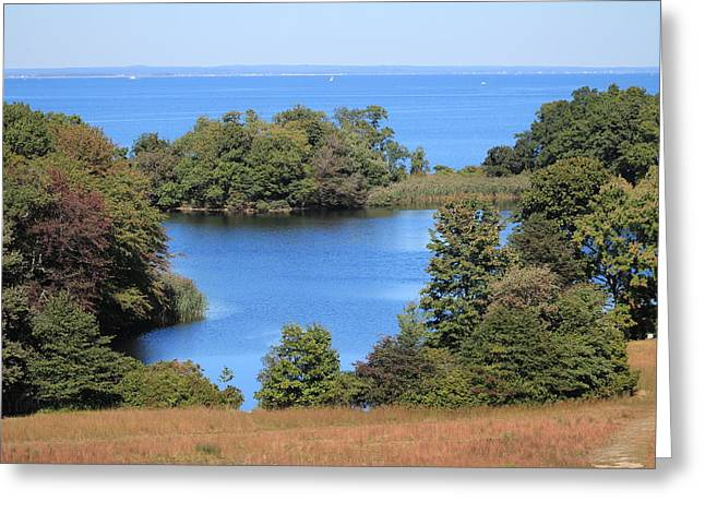 Fresh Pond At Caumsett Greeting Card