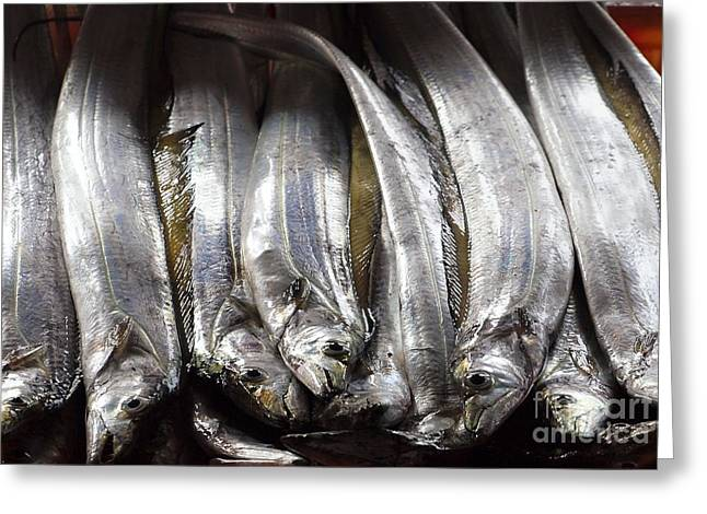 Fresh Ribbonfish For Sale In Taiwan Greeting Card