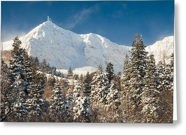 Fresh Snow On Mount Ogden Greeting Card
