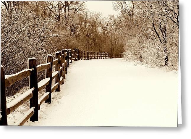 Fresh Snow Greeting Card by Rosanne Jordan