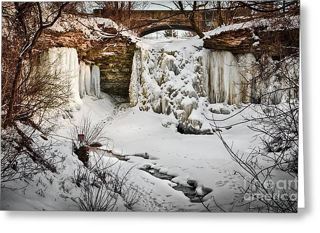 Greeting Card featuring the photograph Fresh Snowfall At Wequiock Falls by Mark David Zahn Photography