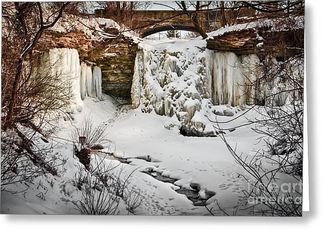 Fresh Snowfall At Wequiock Falls Greeting Card