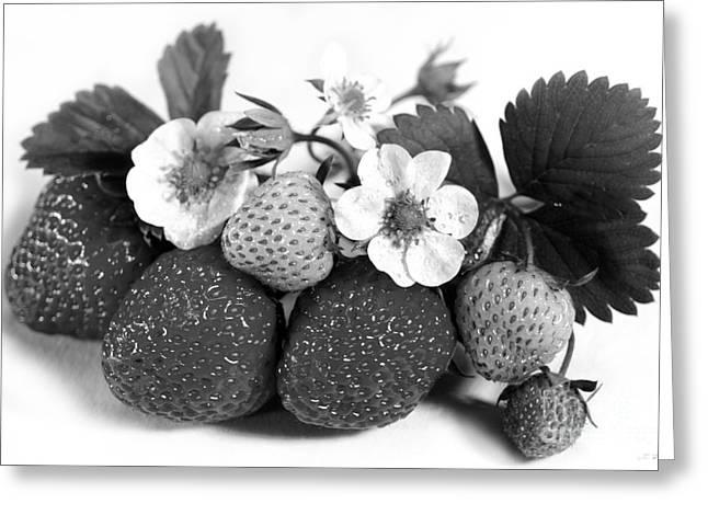Fresh Strawberries On White Greeting Card by Iris Richardson