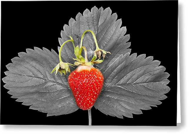 Fresh Strawberry And Leaves Greeting Card by Donald  Erickson