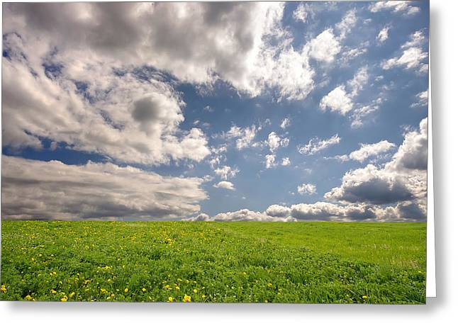 Fresh Summer Landscape Greeting Card by Ioan Panaite