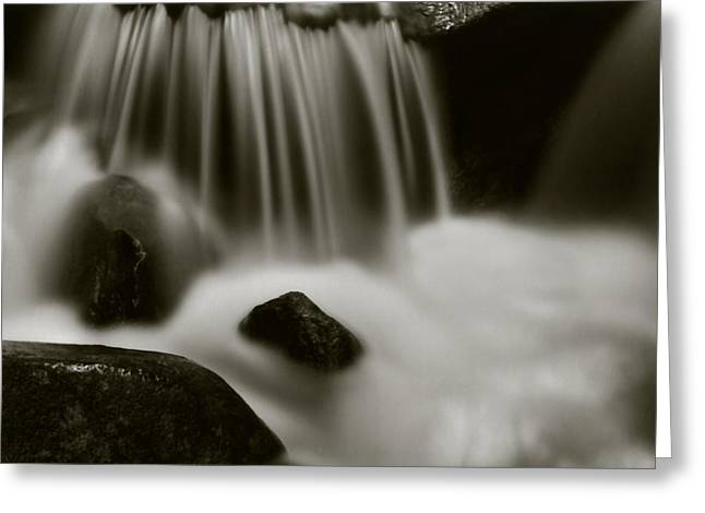 Greeting Card featuring the photograph Fresh Water by Amarildo Correa