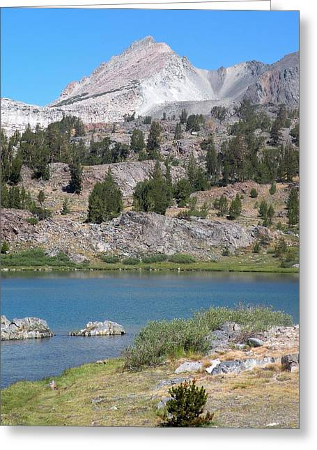 Fresh Water  Greeting Card by Peter Hennessey