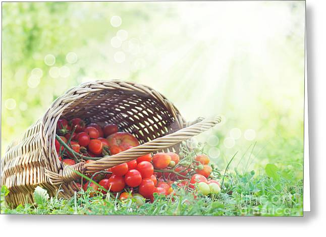 Freshly Harvested Tomatoes Greeting Card by Mythja  Photography