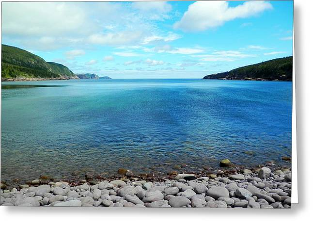 Greeting Card featuring the photograph Freshwater Bay by Zinvolle Art