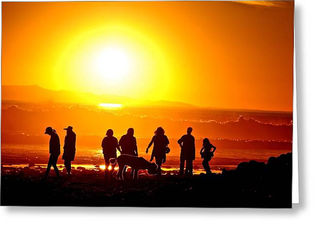 Friends At Sunset Greeting Card by Liz Vernand