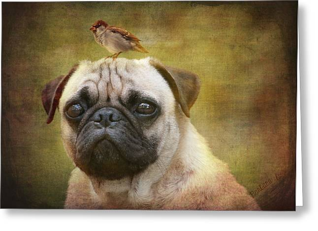 Friends Like Pug And Bird Greeting Card by Barbara Orenya