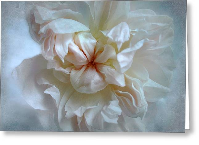 Friendship Is The Breathing Rose Greeting Card by Louise Kumpf
