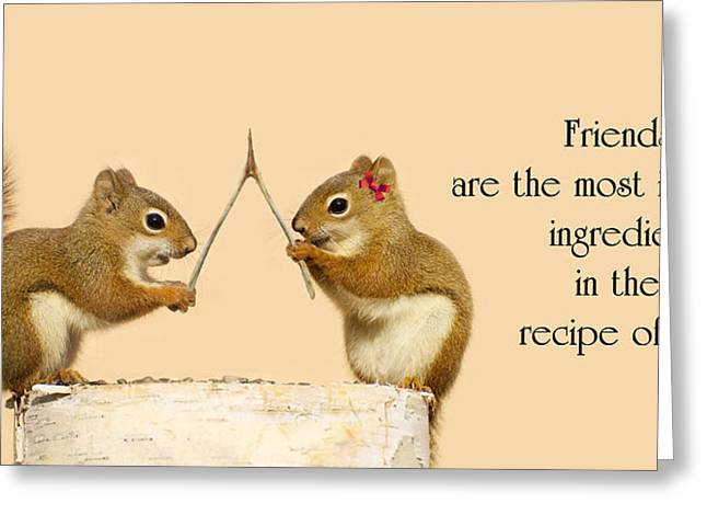 Friendship. Greeting Card by Kelly Nelson