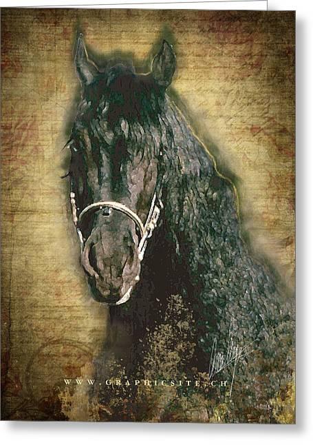Friesian Diamond - A Portrait Greeting Card by Graphicsite Luzern