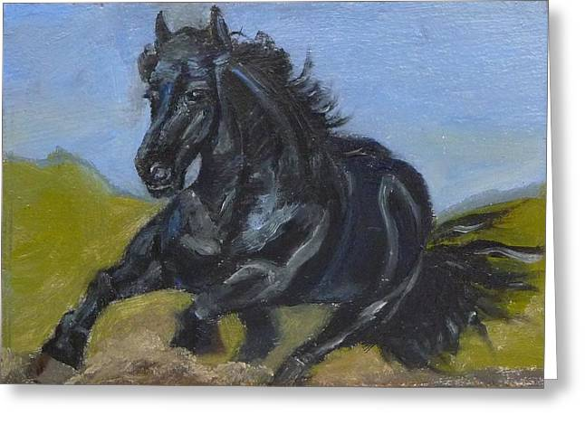 Friesian Greeting Card by Jessmyne Stephenson