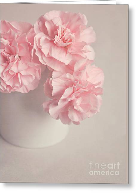 Frilly Pink Carnations Greeting Card