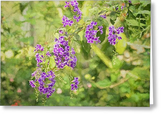 Frilly Purples Greeting Card by Kim Hojnacki