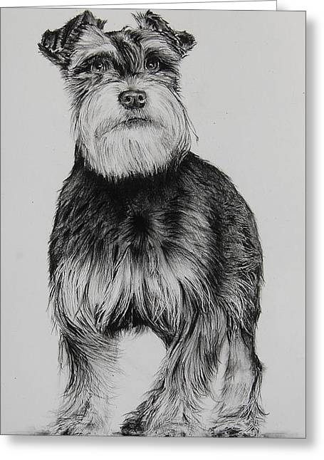 Fritz Greeting Card by Jean Cormier