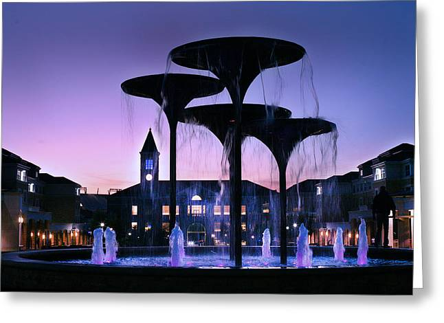 Frog Fountain Pano Greeting Card