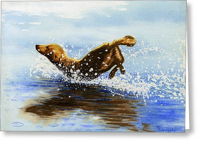 Frolicking Dog Greeting Card